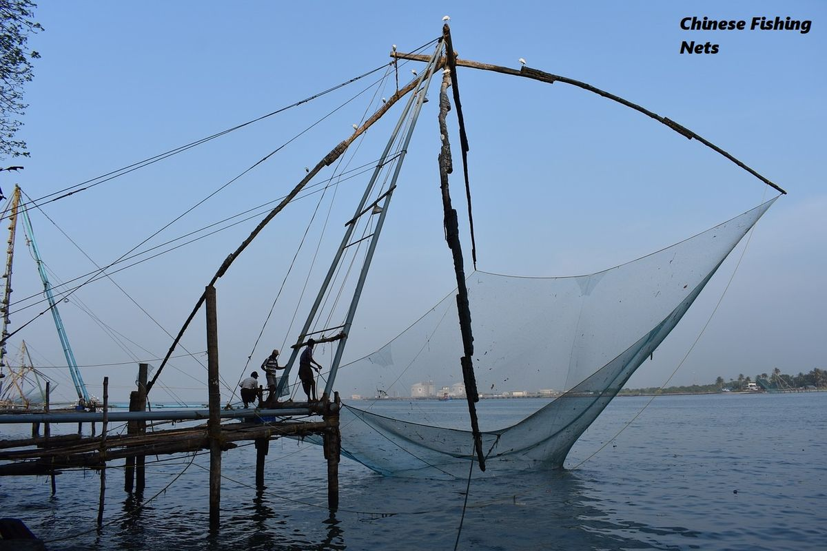 Cochin Shore Excursion India Chinese Fishing Nets