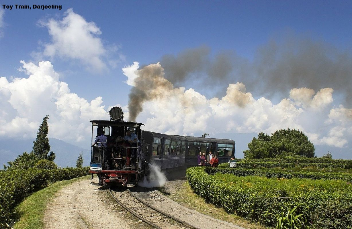 Toy Train Darjeeling Cheap Flights To India