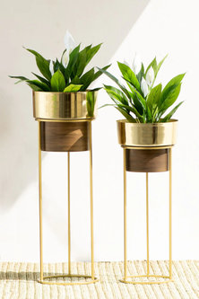 Handmade Isabella Iron Planter In Gold (Set Of 2) by The Decor Remedy