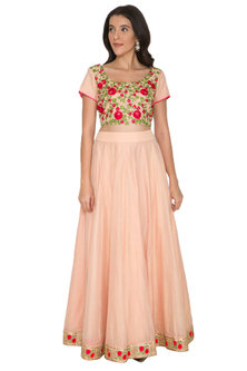 Blush Pink Embroidered Blouse With Skirt by Shalini Dokania