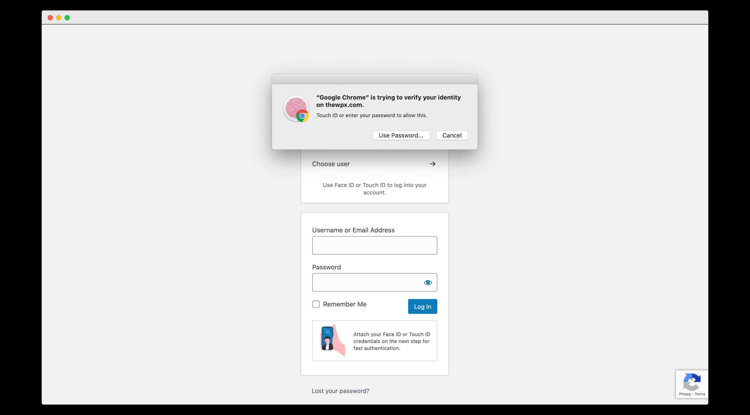 my website, thewpx with passwordless authentication (using touch id)