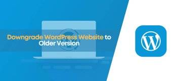 how to downgrade wordpress website