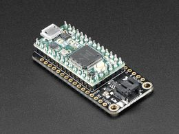 Teensy 3.x Development Board  Feather Adapter