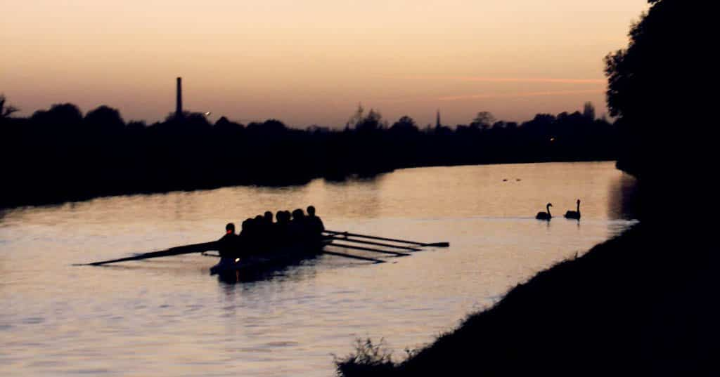 Rowing Together courtesy brendan gogarty