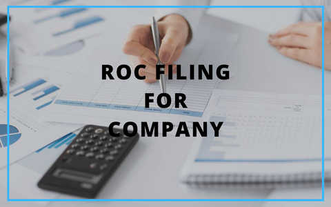 Annual ROC Filing Services_0