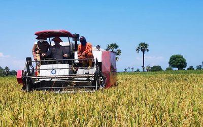 Kementerian Pertanian tengah mempersiapkan kerja sama pembukaan lahan pertanian atau cetak sawah sel...