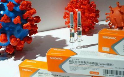 Vaksin COVID-19 buatan Sinovac Biotech China / Reuters\n