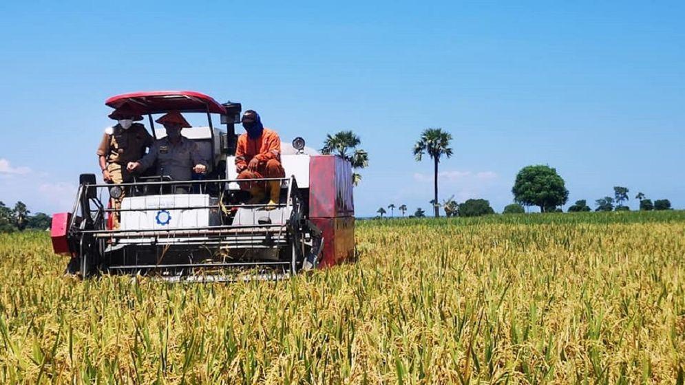 Kementerian Pertanian tengah mempersiapkan kerja sama pembukaan lahan pertanian atau cetak sawah seluas 600.000 hektare. / Facebook @kementanRI\n
