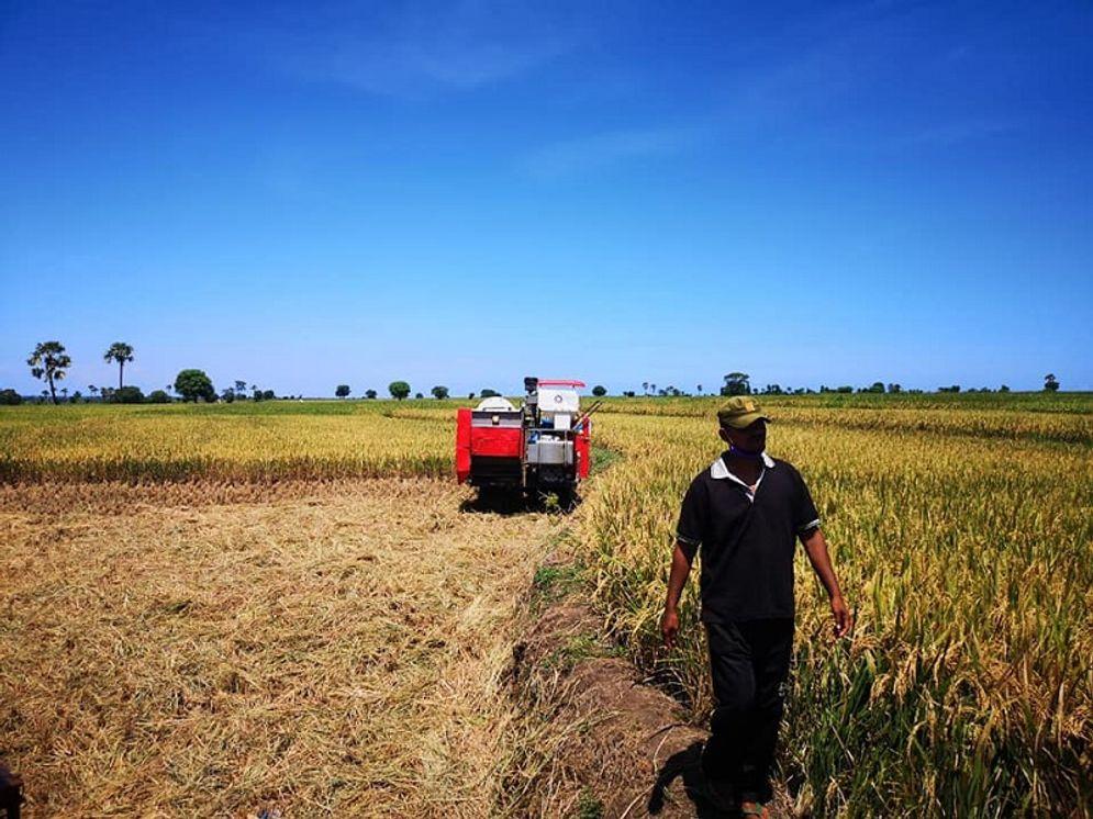 Pemerintah berencana mencetak ratusan ribu hektare sawah baru di lahan gambut. / Facebook @kementanRI\n