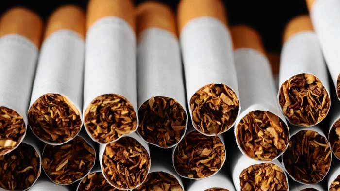 Pentingnya Kesadaran Ilmiah dalam Mengurangi Bahaya Rokok