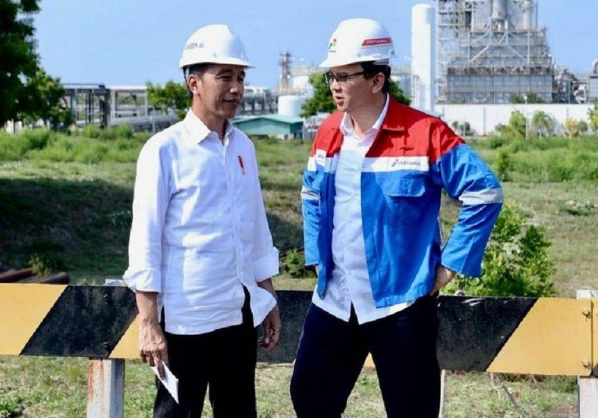 Jokowi Siapkan Ahok hingga Azwar Anas Jadi Calon Kepala Otorita Ibu Kota Negara