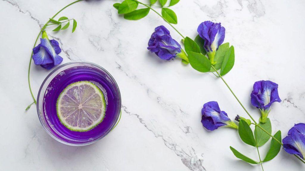 1617410462282 - Bunga Berwarna Ungu yang Memiliki Manfaat bagi Kesehatan