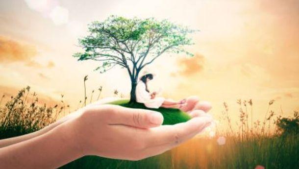 Mengembangkan Ecoliteracy, Upaya Menampik Krisis Lingkungan Hidup
