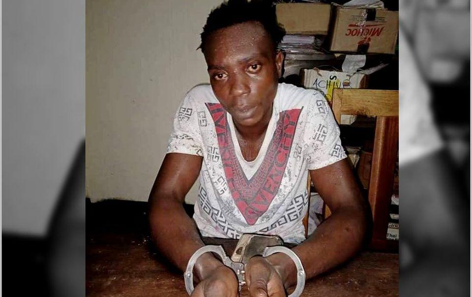 Il ne fallait pas condamner le jeune qui avait insulté Paul Biya