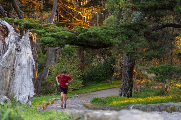Paddy running in Buena Vista Park