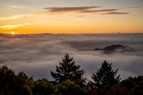 Mt Tam Pre Sunrise Fog