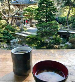 Jardins de thé japonais