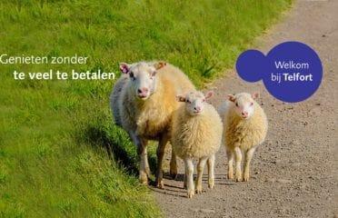 Telfort Store La Haye Spuistraat