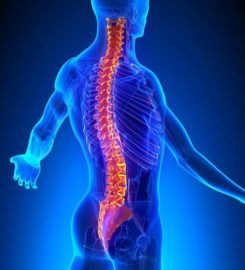 Sunnyvale Family Chiropractic