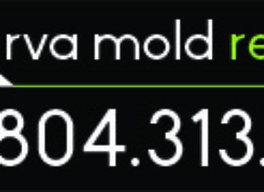 RVA Mold Removal
