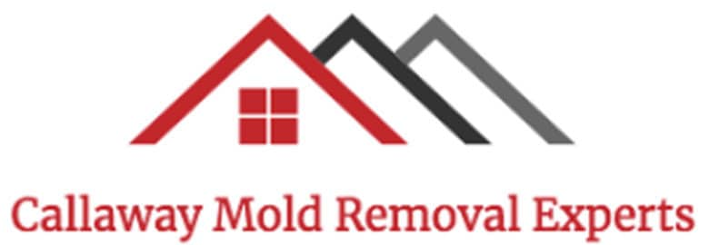 Callaway Mold Removal Experts