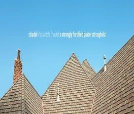 Citadel Roofing and Restoration