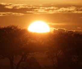 Serengeti Acacia Camps