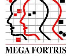 Mega Fortris Saudi Arabia Ltd