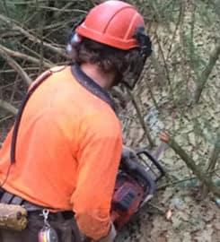 Epic Tree Care