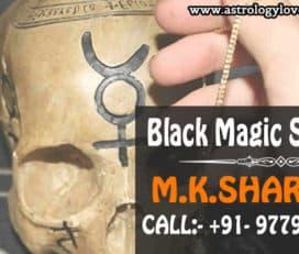 Love Astrology: Love Vashikaran Astrologer M.K Sharma