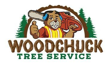 home tree service removal