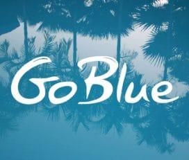 Go Blue Toures