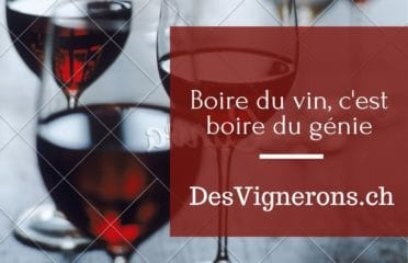 DesVignerons : Wine Tastings and Vineyard Tours
