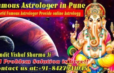 Famous Astrologer in Pune
