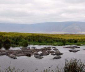 Katambuga Expedition