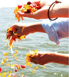 Hindu Priest Services