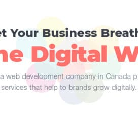 Web Design & Development in Fredericton, Canada – Ehues Web Solutions.