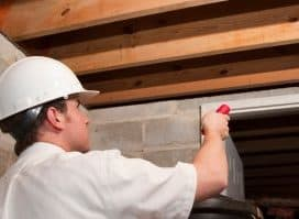 Find Best Reliable Pest Inspections Adelaide