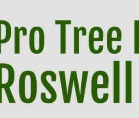 Pro Tree Removal Roswell