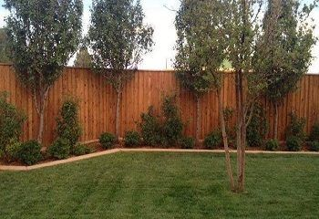 Abilene Privacy Fencing
