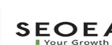SeoEaze – Best SEO Company in Delhi NCR