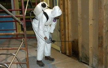 New Mexico Mold Removal