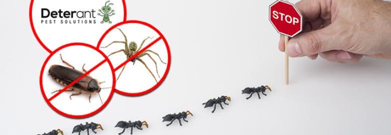Deterant Pest Control Adelaide