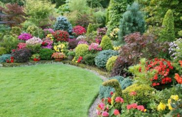 Best Gardeners Oxford
