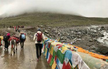 Tibet Universal International Travel Co. Ltd.