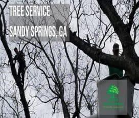 Top Tree Service Company
