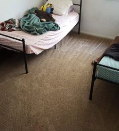 Six Carpet Cleaning of Oakville