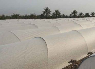 Innogryl – Biodegradable Agricultural Film