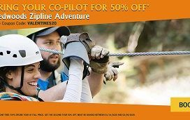 Sonoma Canopy Tours