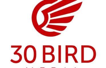 30 Bird Media